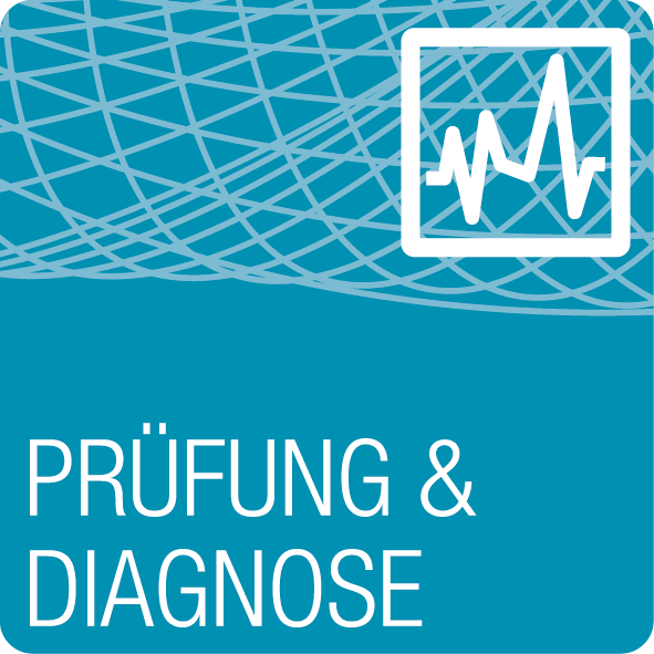 pruefung diagnose